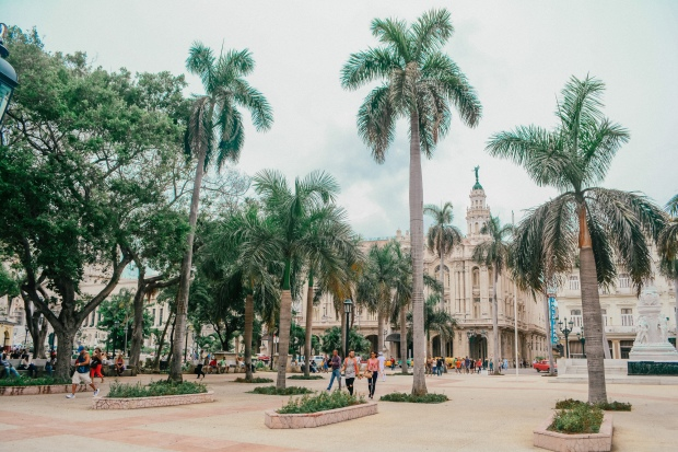 Havana-32