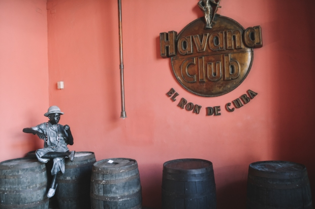 Havana-37