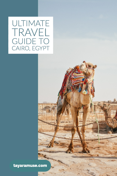 What better way to know the ins & outs of Cairo than from a local? Check out our ultimate guide to traveling to Cairo, Egypt.